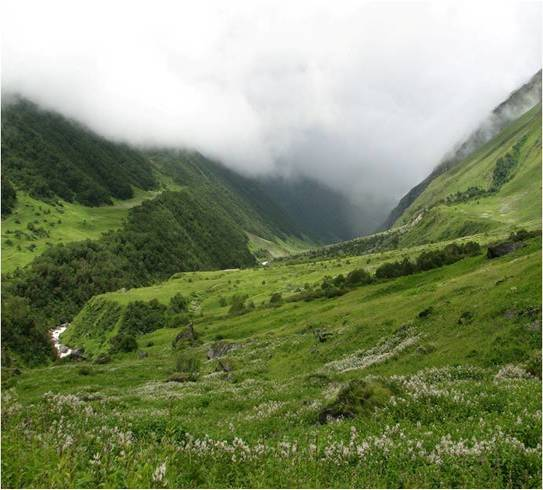 valley-of-flowers-garhwal-himalayas